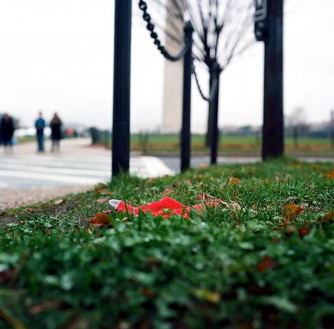 Redglove-DC